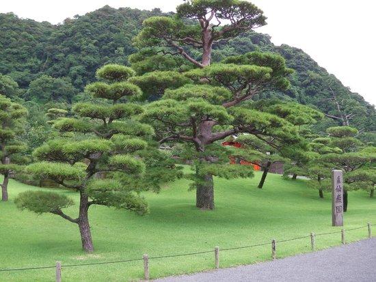 手藝精湛的雕刻師傅 - Picture of Sengan-en Garden, Kagoshima - TripAdvisor