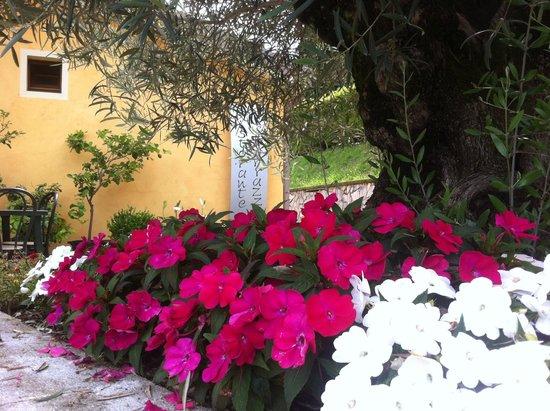 insegna con fiori - Foto di Le terrazze, Ubiale Clanezzo - TripAdvisor
