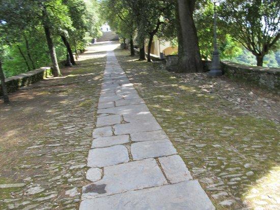 Santuario di Montallegro: Тропинка, ведущая к святилищу
