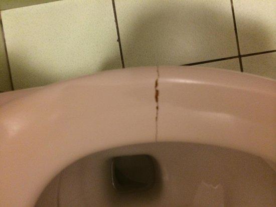 Le Meridien Tahiti: Broken toilet seat