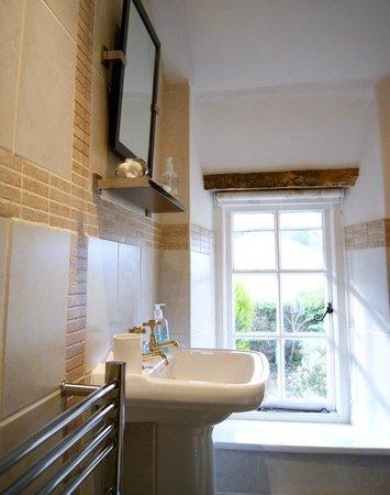 Plas Efenechtyd Cottage B&B: Shower room