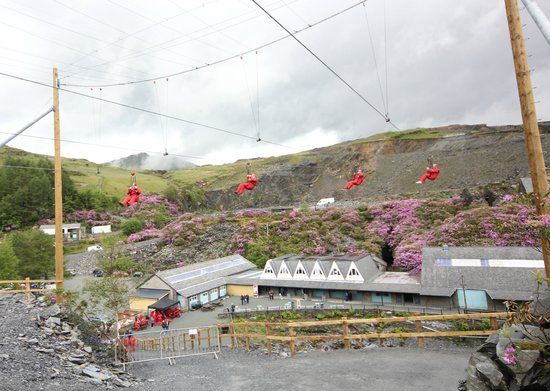 Blaenau Ffestiniog, UK: Coming into land down the third zip line