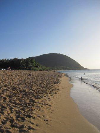 Gites les Manguiers: la plage de grande Anse a 200m