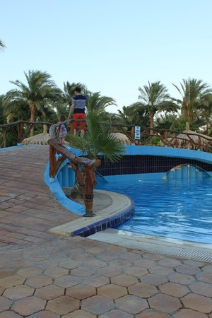 Nuweiba Coral Resort: Главный бассейн