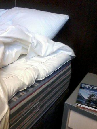 Scenic Hotel Dunedin City : Feather Underlay