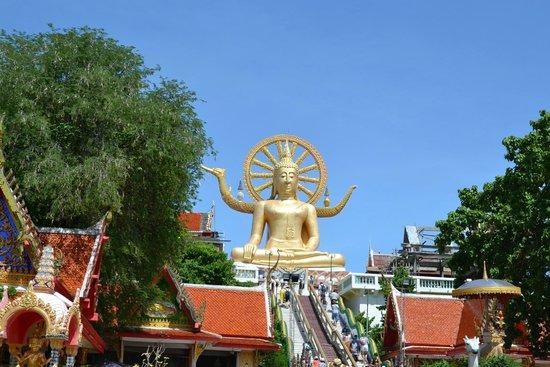Big Buddha Temple (Wat Phra Yai) : Lindo!