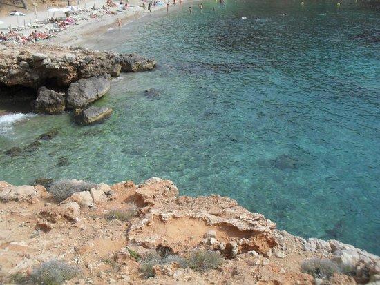 Playa Cala Salada: Mare da sogno!