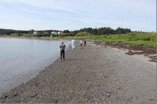 Experience Nova Scotia - Experiential Tours