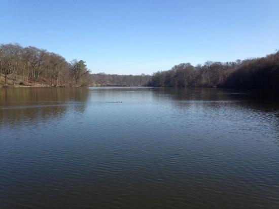 Les Etangs de Commelles : Les étangs