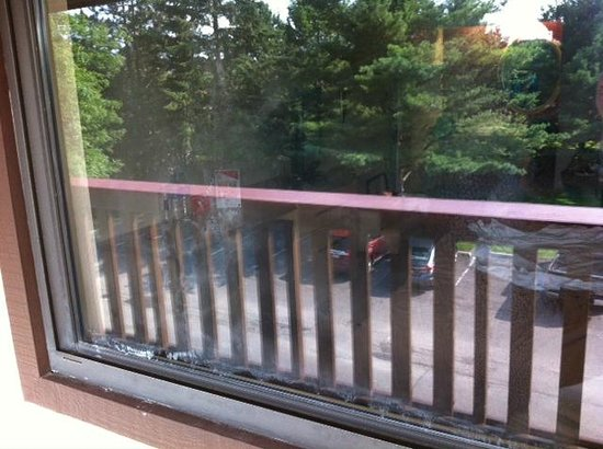 Superior Red Roof Inn Albany Airport: Dirty Window Looking Out
