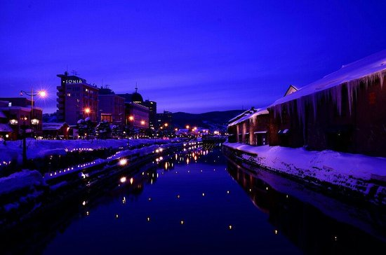 Otaru Canal: 小樽雪燈之路