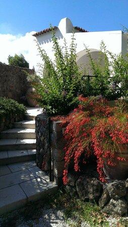 Garden & Villas Resort: номер