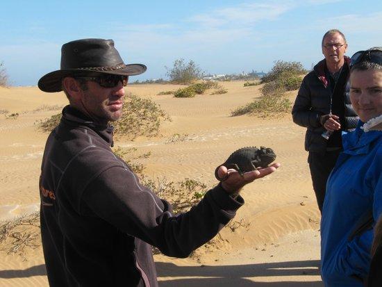 Alte Brucke: Tour mit Living Desert Adventures (ein Muss)