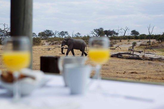 Breakfast with a view at Savute Safari Lodge