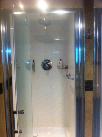 Men gym changing room shower nicer than superior bedroom shower