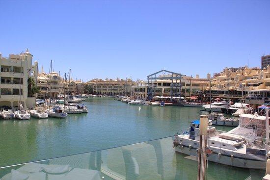 Toro Puerto Marina: Vistas desde el Restaurante Toro (Puerto Marina)