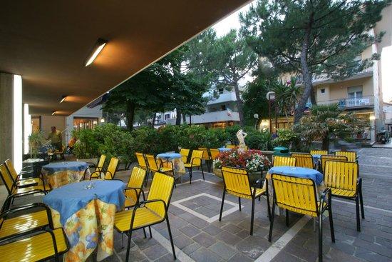 Mon Hotel Misano: giardino
