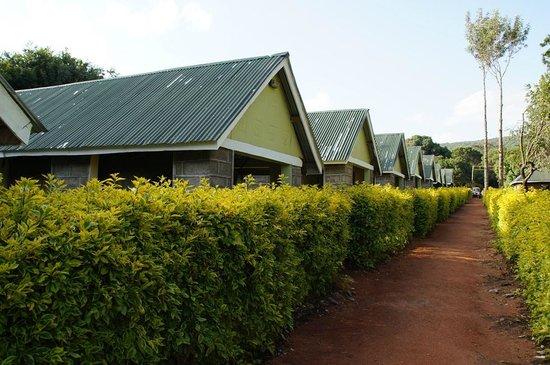 Rhino Tourist Camp: домики