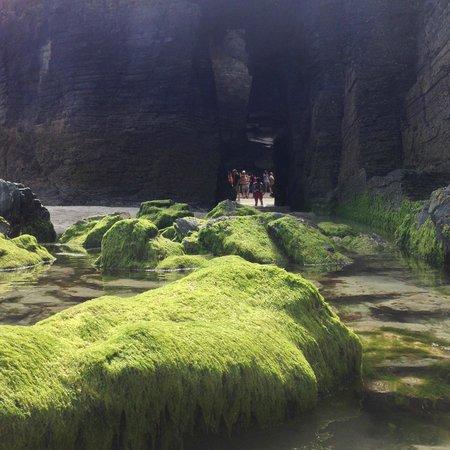 Playa de las Catedrales: Preciosos colores , agua, algas, arena ,rocas....