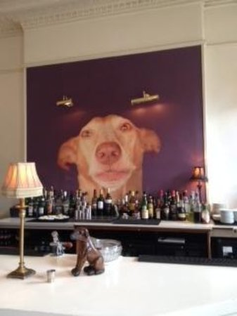 The Dogs : behind the bar