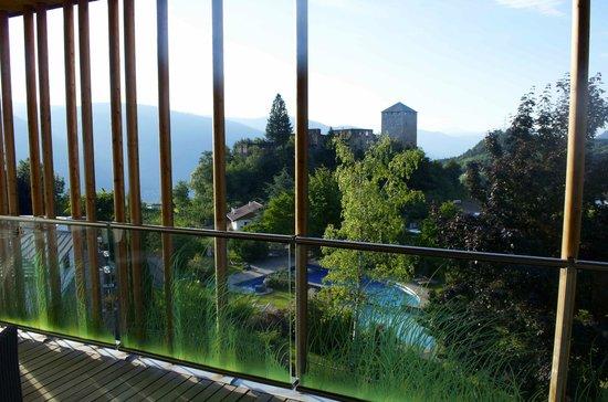 Hotel Der Waldhof: Aussicht auf Burg