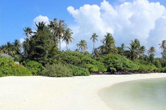 Kuredu Island Resort & Spa: tropical island