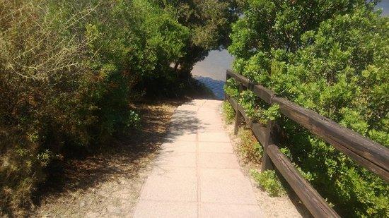 AHR Costa Serena Village: ilvialetto di accesso a una delle spiagge vicine
