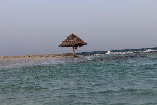 Palm Island Resort & Spa: Mopia