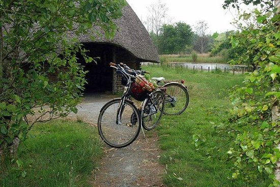 Millstreet Country Park: Crannog by the Lake while on the Leisure trail