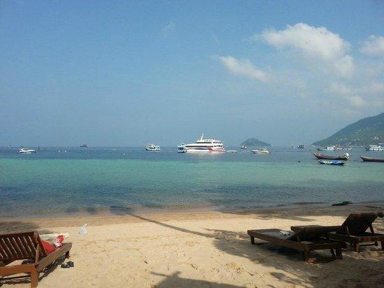 Blue diamond Resort: Вид с пляжа