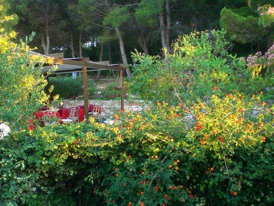 Hotel Le Viole: Colazione tra i fiori