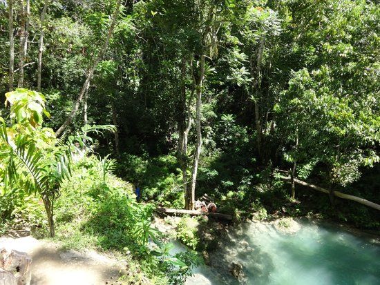 Courtney Taylor  Tours Jamaica: Blue Hole Jamaica