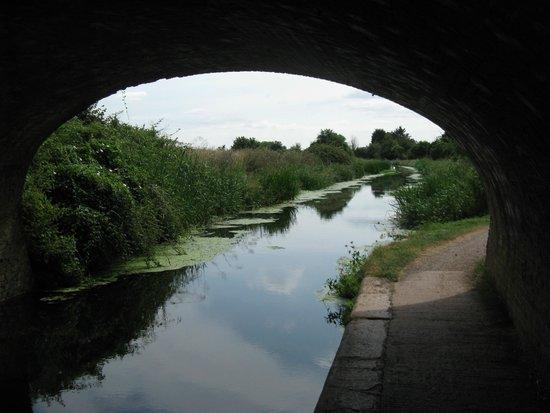 Somerset Towpath: View under Bridgwater Road Bridge
