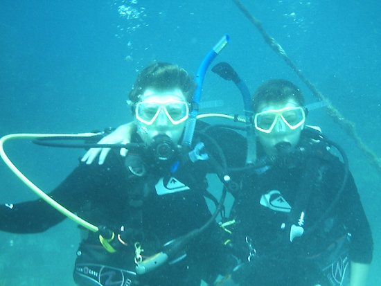 Ocean Divers Bayside : Our boys having an awesome time