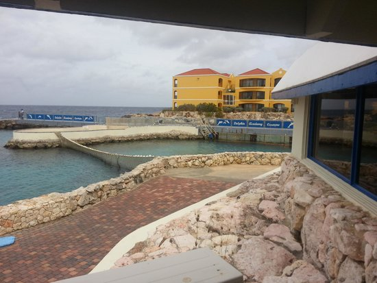 The Royal Sea Aquarium Resort : Roysl Sea Aquarium Resort from the aquarium