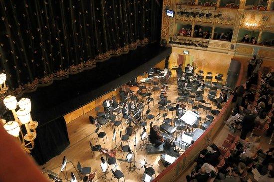 Teatro La Fenice: オケ・ピット