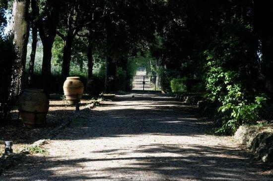 Relais Villa De Angelis : Park