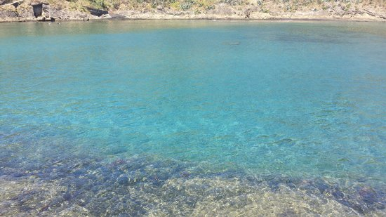 Islet of Vila Franca do Campo: Acqua color smeraldo