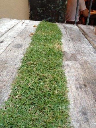 DIY Dorm: grass table