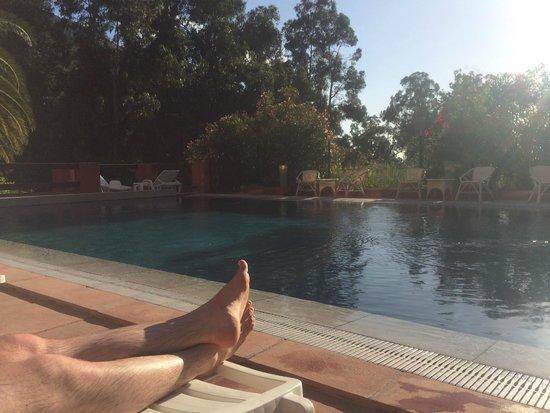 Hôtel Corsica : piscine