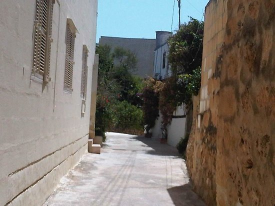 Gozo Hills Bed and Breakfast : village xaghra