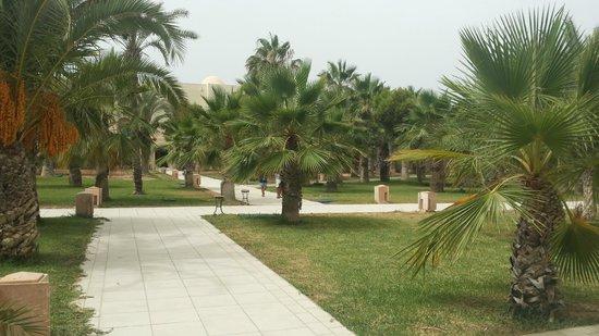 Yadis Djerba Golf Thalasso & Spa : Giardino yadis
