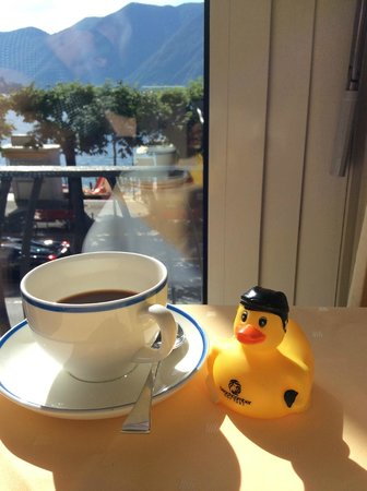 Hotel Walter au Lac: The view was just ducky.