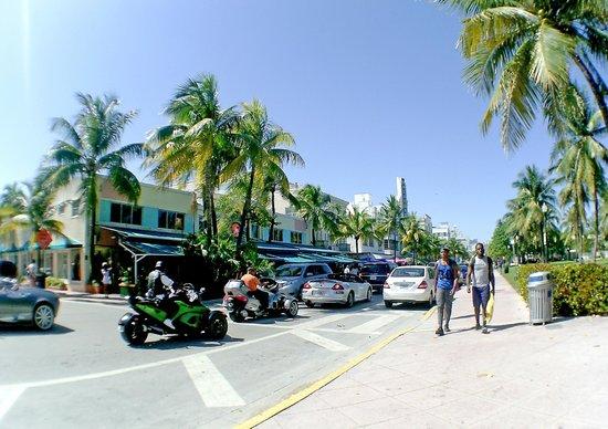 South Beach : Ocean Drive
