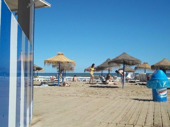 Valencia Bus Turistic: playa de Valencia, un sueño!!