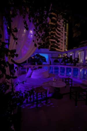 Phoenicia Hotel : Hotel Pool area