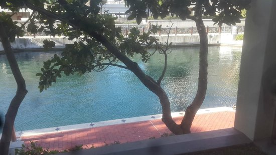 Waterfront Village : View from room