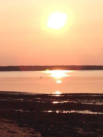 Maplehurst Properties: Only one of a ton of sunset pictures on panmure island off maplehurst b&b beach