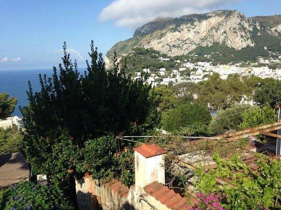 Hotel La Reginella: What a view