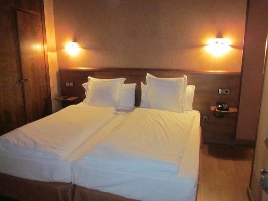 Hotel Anyos Park: la chambre, lits jumeaux confortables